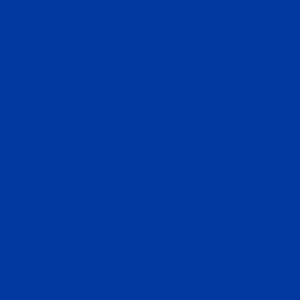 Blue PVC Tablecloth