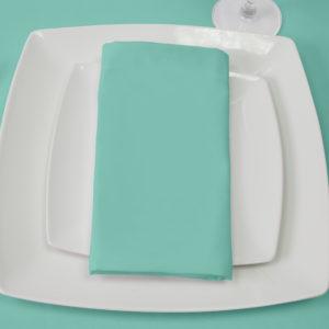 Aquamarine Napkin